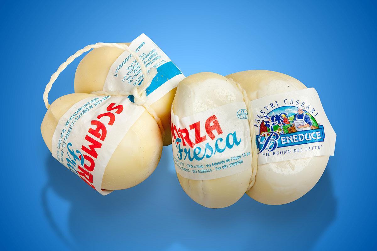 Mozzarella Provola Ricotta Factory